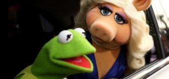 Кърмит и Мис Пиги се разведоха