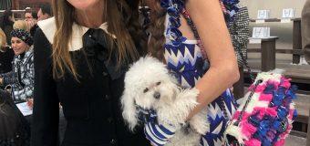 Пуделът Саша отново сред ВИП-гостите на Chanel